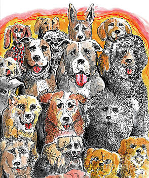 Dogs At Attention by Terry Banderas