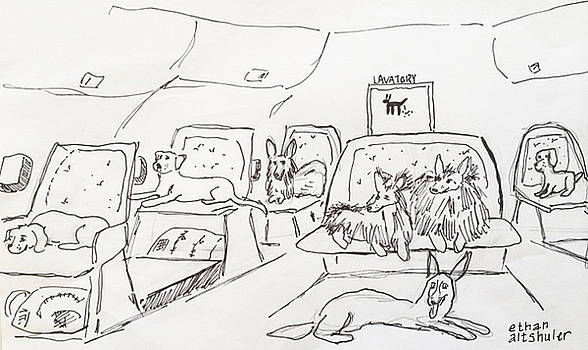 Dogs in First Class by Ethan Altshuler