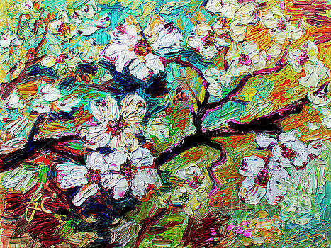 Ginette Callaway - Dogwood Blossoms