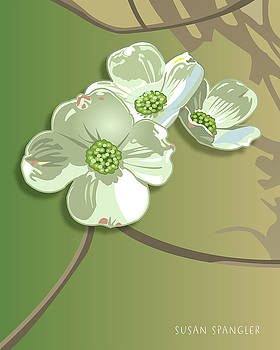 Dogwood Blossoms by Susan Spangler