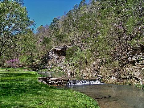 Dogwood Canyon Cliffs by Julie Grace
