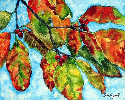 Dogwood in Autumn II by Brenda Jiral