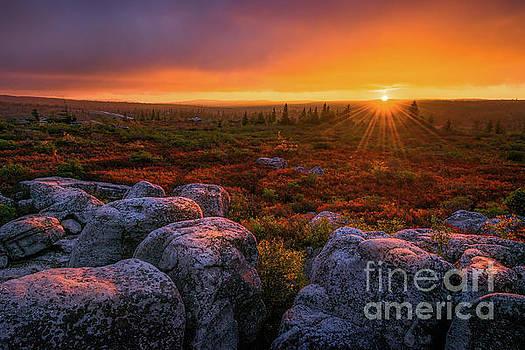 Dolly Sods Sunset by Anthony Heflin