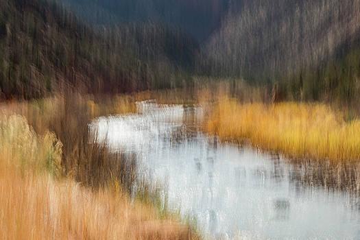 Dolores River Canyon by Deborah Hughes