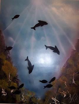 Dolphin Dance by Juan Carlos Feliciano