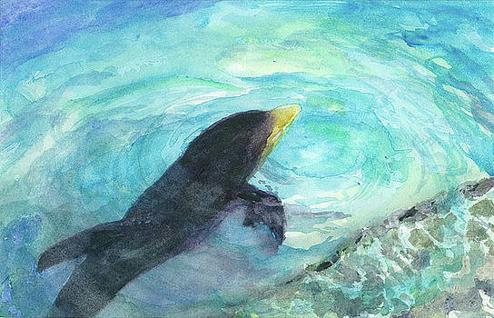 Dolphin Delight by Evelyn Cassaday