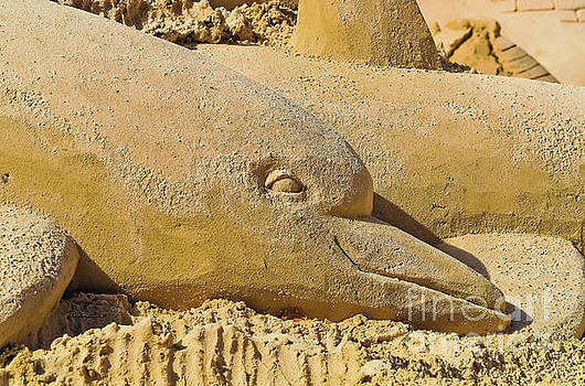 Dolphin Sand Castle Sculpture on the Beach 799 by Ricardos Creations