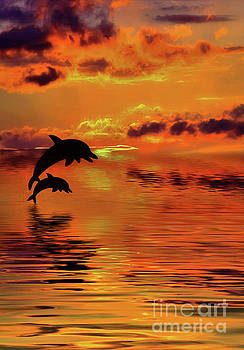 Dolphin Silhouette Sunset by Kaye Menner by Kaye Menner