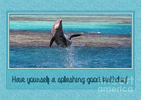 JH Designs - Dolphin Splash Birthday