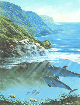 Dolphins at Moray Rock by Susan Elizabeth Wolding