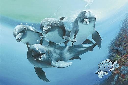 Dolphins by Durwood Coffey