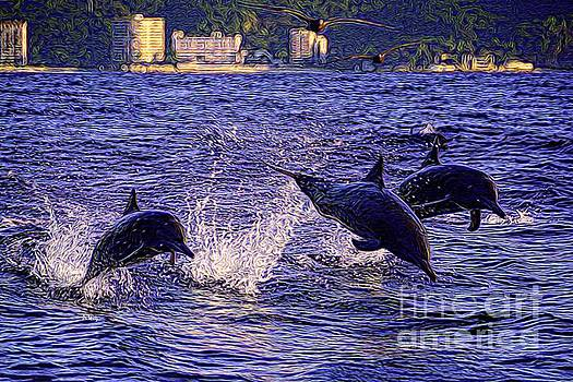 Dolphins by Patrick Witz
