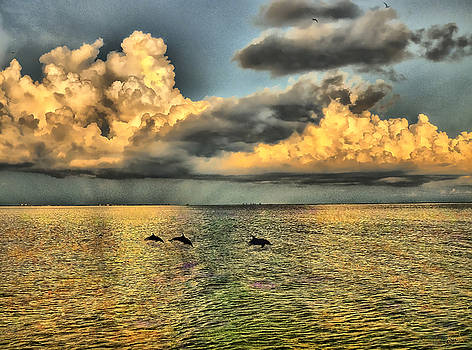 Dolphins Play at Sanibel Island by Jeff Breiman