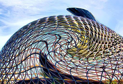 Karen Scovill - Dome Twister