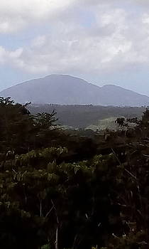 Dominica Noth Mountain by William James