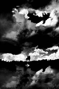 Don Quixote by Brian Sereda