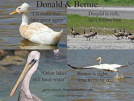 Gary Canant - Donald and Bernie