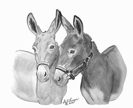Donkey Friends by Gail Finger