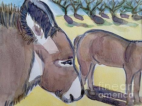 Donkeys by Virginia Vovchuk