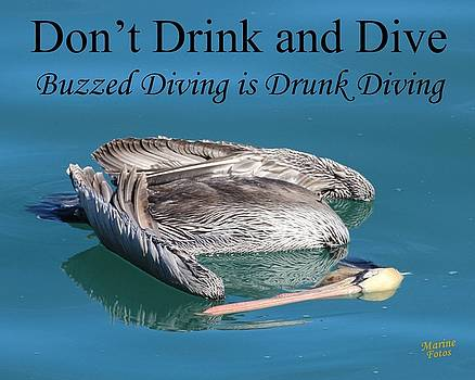 Dont Drink and Dive by Gary Canant