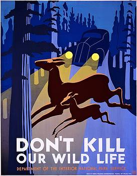 Dont kill our wild life, WPA poster, 1938 by Vintage Printery