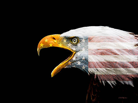 Don't Mess with the US by Ericamaxine Price