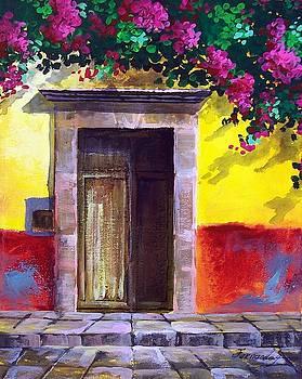 Door with Summer Shadowa  by Fernando Gonzalez