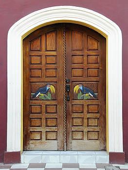 Rosa Diaz - Doors of Granada