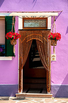 Doorway And Flowers Burano Italy by Xavier Cardell