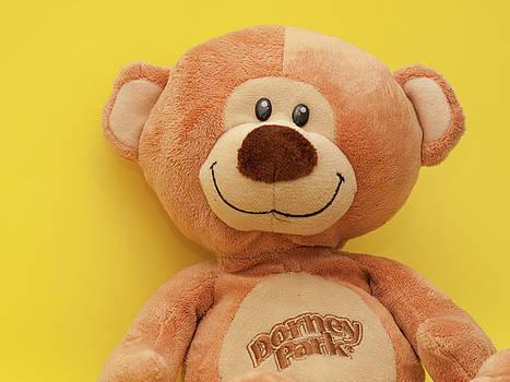 Dorney Bear by Valerie Morrison