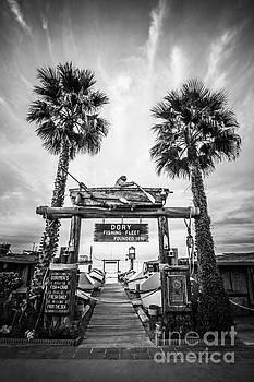 Paul Velgos - Dory Fleet Market Newport Beach Photo