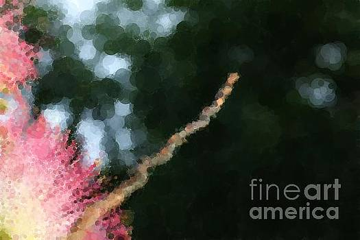 Dot Painting - Mimosa Blossoms and a Small Branch by Dee Winslow