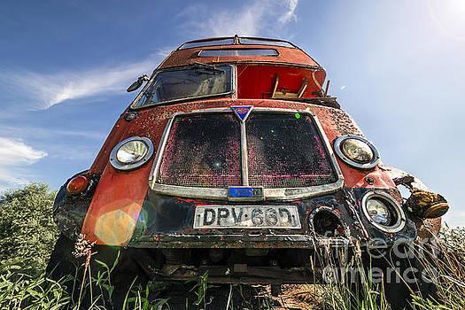 Svetlana Sewell - Double Decker Bus