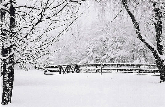 Double Gate in Winter by Linda Drown
