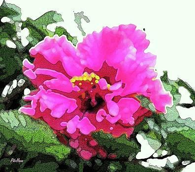 Double Hibiscus by Peggy De Haan