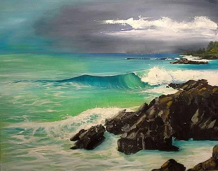 Double Island Point by Shirley Lennon