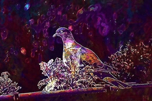 Dove Bird Garden  by PixBreak Art
