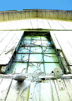 Dover Farms Barn Window with Vines by John Castell