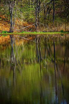 Karol Livote - Down At Pecks Pond