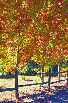 Down By Autumn Lane by Chrystyne Novack