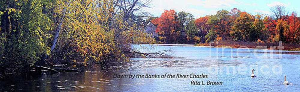 Down By The Banks of the river Charles by Rita Brown