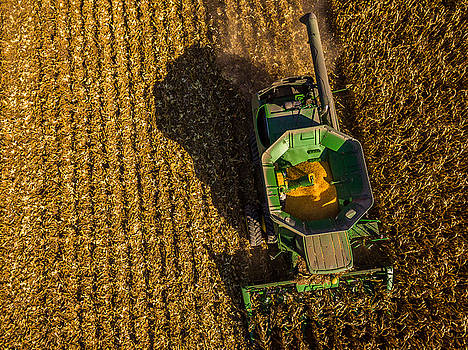 Down on the Combine by Nick Smith