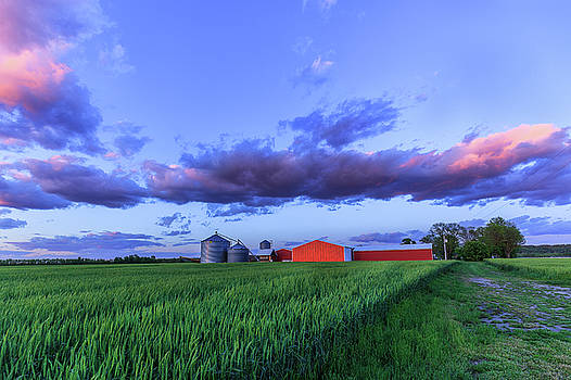 Down on the Farm by Allen Ahner
