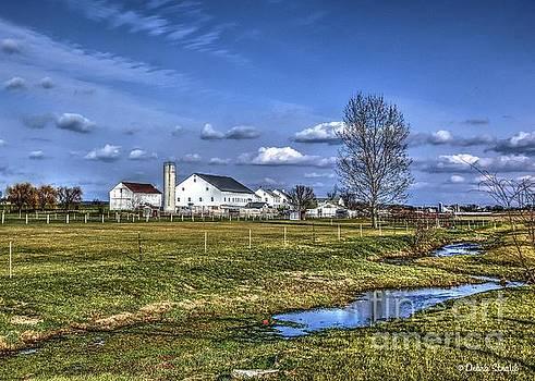 Down on the Farm by Debra Straub