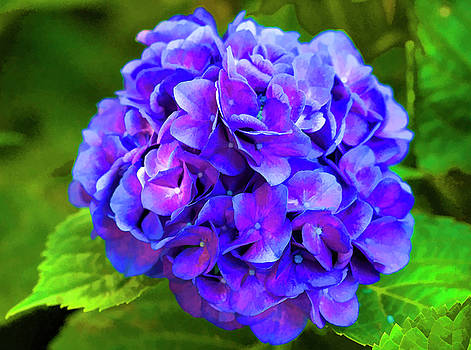 Down Right Purple to Blue by Kathy Clark