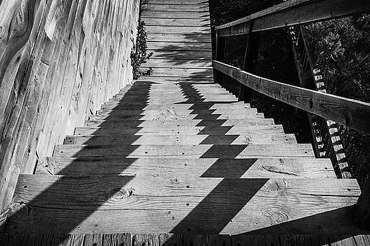 Down stairs at Bannack by Richard Rodney Greenough