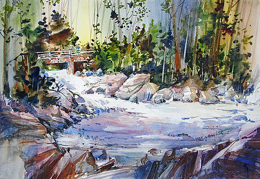 Down Stream on Hoppers Creek by P Anthony Visco