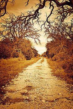 Down The Road by Kori Creswell