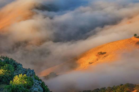 Marc Crumpler - Downhill Fog Flow