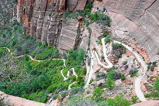 Robert Meyers-Lussier - Downhill Switchbacks from Angels Landing